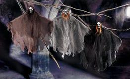 Halloween scene on dark background Stock Photos