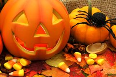 Halloween scene with Jack o Lantern Stock Photos