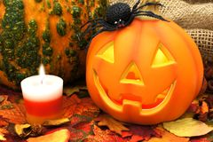 Halloween scene with Jack o Lantern Stock Image