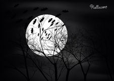 Halloween scene with trees,moon and bats Stock Image