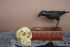 Halloween-Schädel und -krähe lizenzfreies stockfoto