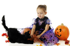 Halloween-Schönheit mit einem Tier stockfotos
