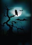 Halloween-Schattenbilder   Stockfotografie