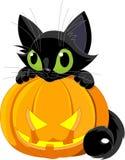 Halloween-schwarze Katze Stockbild