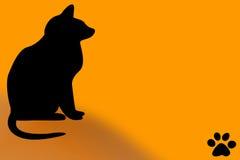 Halloween-schwarze Katze Stockfoto