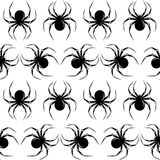 Halloween seamless. With black  spiders on the white background Royalty Free Stock Photo