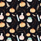 This halloween seamless pattern on a black background included magic cauldron,potion bottles,bats,ravens,branches and pumpkin. Royalty Free Stock Photos
