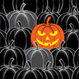 Halloween seamless pattern with dotted pumpkins in orange and in black Royalty Free Stock Images
