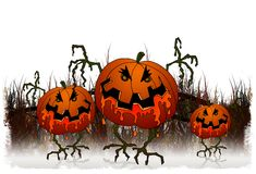 Halloween series - pumpkins Royalty Free Stock Photo