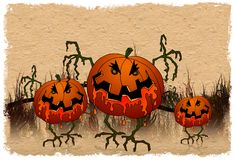 Halloween series - pumpkins Stock Photography