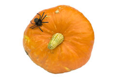 Halloween series on white Royalty Free Stock Photography