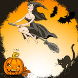 Halloween set. Pretty  witch on a broom and  bat flies over the pumpkin and cat Royalty Free Stock Images