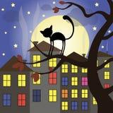 Halloween set of element. Halloween cat on tree night moon stars Royalty Free Stock Photos