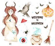 This halloween set included magic cauldron,eye,broom,little witch,bats,crazy pumpkin. Royalty Free Stock Photography