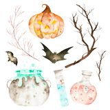 This halloween set included magic cauldron,potion bottles,bats,branches and crazy pumpkin. This collection perfect for decorating your halloween sketchbook Stock Illustration