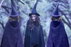 HALLOWEEN SHABASH WITCH. fairies. In hats royalty free stock photos