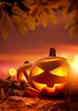 Halloween Sila-o-Lyktor Arkivbilder
