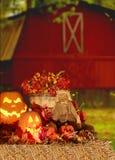 halloween skörd Arkivfoto