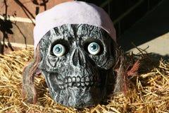 halloween skalle Arkivfoton