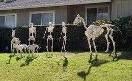 Halloween-Skeletgroep, paard, weinig mensen en honden Royalty-vrije Stock Foto