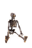 Halloween skeleton Stock Photos