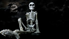 Halloween Skeleton Chilling Royalty Free Stock Images
