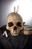 Halloween Skeleton head in dark ceremony Stock Image