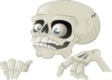Halloween Skeleton with Placard Royalty Free Stock Photography