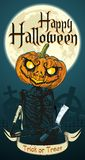Halloween Skeleton Pumpkin Flier Royalty Free Stock Photography