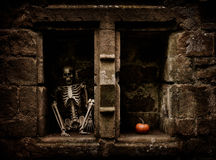 Halloween Skeleton Royalty Free Stock Photos