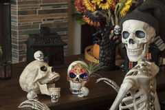 Halloween Skeletons. Halloween skeleton, skulls and candy skull decor for the holiday royalty free stock image
