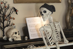 Halloween Skeletons. Halloween skeleton and skulls at a piano decorated for the holiday royalty free stock photos