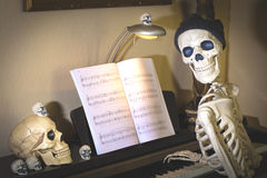 Halloween Skeletons. Halloween skeleton and skulls at a piano decorated for the holiday royalty free stock photo