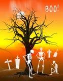 Halloween Skeletons Stock Image