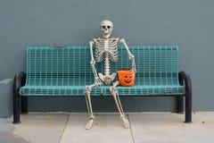Halloween-Skelett stockbild