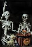 Halloween-Skelette, die fertig werden, zu gehen Trick oder Behandlung stockbild