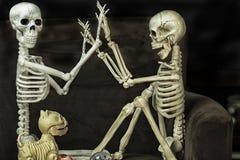 Halloween-Skelette, die fertig werden, zu gehen Trick oder Behandlung lizenzfreie stockfotografie
