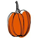 Halloween sketched orange pumpkin Stock Photos