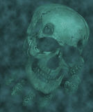 Halloween Skull Stock Photography