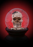 Halloween Skull Royalty Free Stock Images