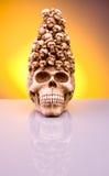 Halloween skull. Holloween skull reflections in orange background royalty free stock photography