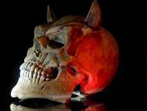 Halloween skull stock photography