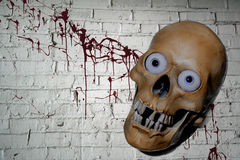 Halloween Skull with blood background Royalty Free Stock Images