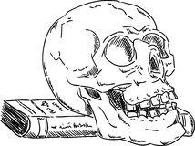 Halloween skull Royalty Free Stock Photo