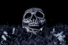 Halloween Skull In Grass. Halloween dark night scene with a skull sitting in the grass on the right side Stock Photography