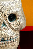 Halloween skull half face. Halloween skull with seasonal colors..scary and macro Stock Photography