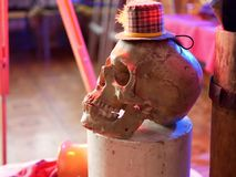Halloween, skull illuminated with red light in a decorative still life on Helloween royalty free stock photos
