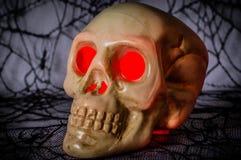 Halloween Skull Royalty Free Stock Image