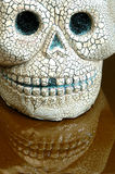 Halloween skull teeth reflection Stock Photos
