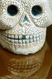 Halloween skull teeth reflection. Scary  ceramic halloween skull with teeth reflection Stock Photos